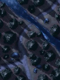 Moonlight_Maps_Forest_Stream_Crossing_no