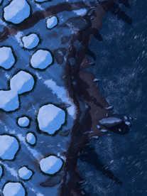 Moonlight_Maps_Coastal_Forest_Snow03_nig