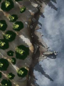 Moonlight_Maps_Coastal_Forest_Mist07_18x