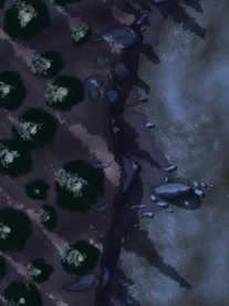 Moonlight_Maps_Coastal_Forest_Toxic05_ni