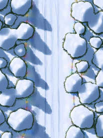 Moonlight_Maps_Forest_Road_Snow_Lights10