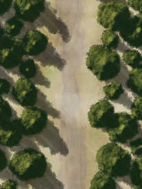 Moonlight_Maps_Forest_Road_Mist13_18x22_