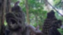 Monkey forest Ubud.jpg