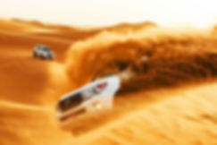 Desert Safari.jpg