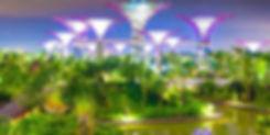 Gardens-by-the-Bay-1.jpg
