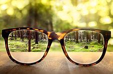 glasses small leders.jpg