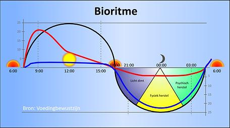 bioritme_LARGE.png