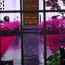 the-secret-garden_6890565052_o.jpg