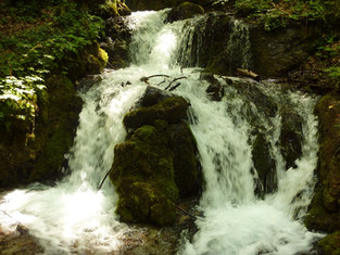 Quelle des lebendigen Wassers