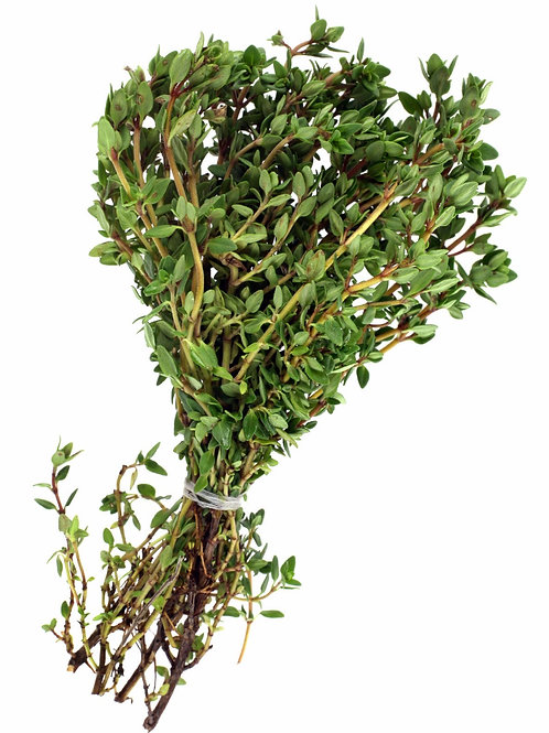 Thyme Roots