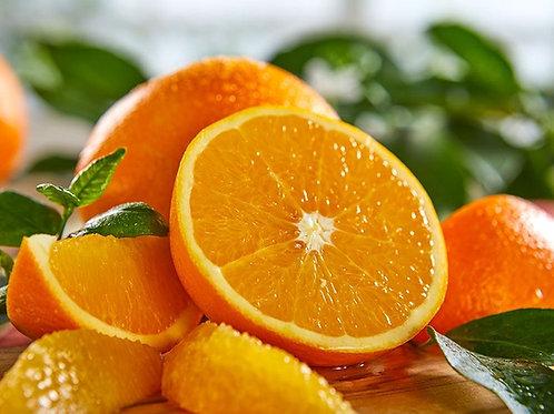 Orange Navel ct