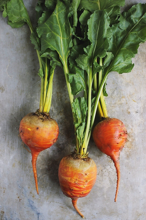 Gold Beets/ lbs