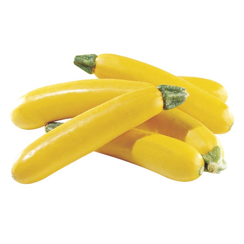 Yellow Zucchini/ Each
