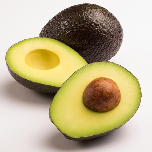 MEXICAN Avocado/4 in Pack