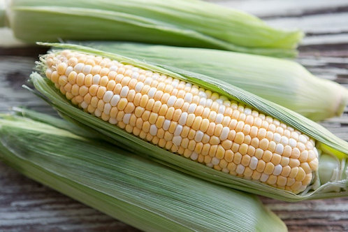 Corn/ ct