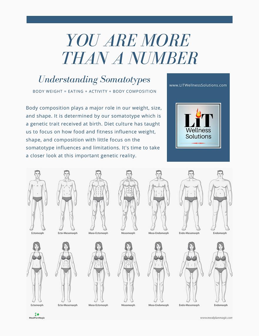 Understanding Somatotypes Part 1
