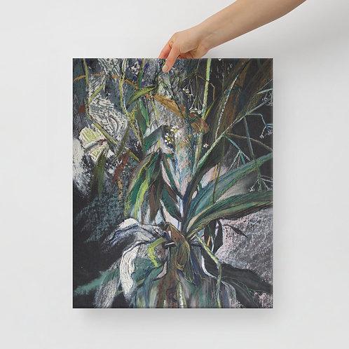 Field herbs. Yang yin - print on Canvas
