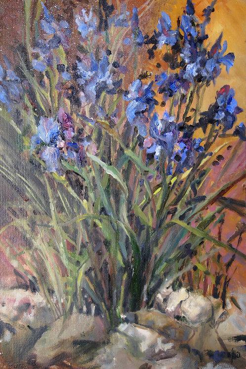Country sketch. Blue irises - original oil painting