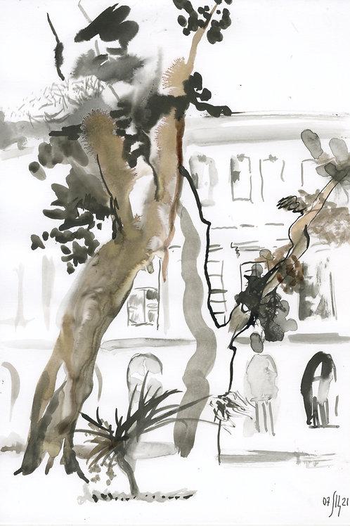 Academic Garden 21267 - urban sketch