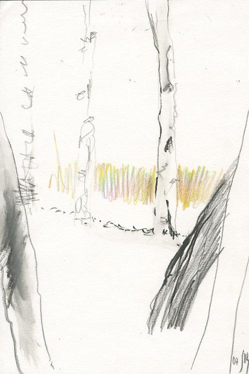 Vasiliy park - 1 minute original urban sketch #2