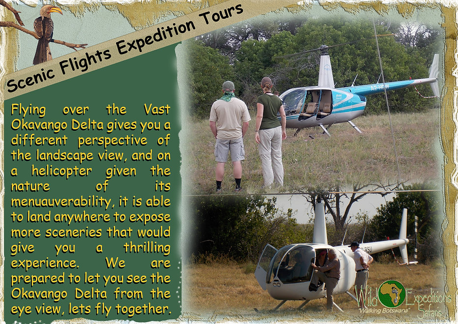 Scenic Flights Expedition Tours.jpg