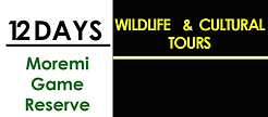 12 Days Options Moremi Game Reserve.png