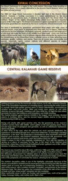 CENTRAL KALAHARI GAME RESERVE N KHWAI AR