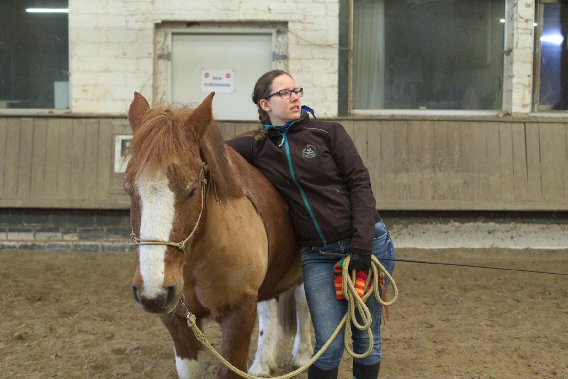 Horsemanship-Training