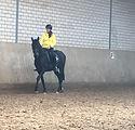 08102018 Neuer Horsestar Sattel-032.jpeg