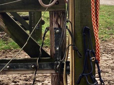 Die Horsemanship-Ausrüstung