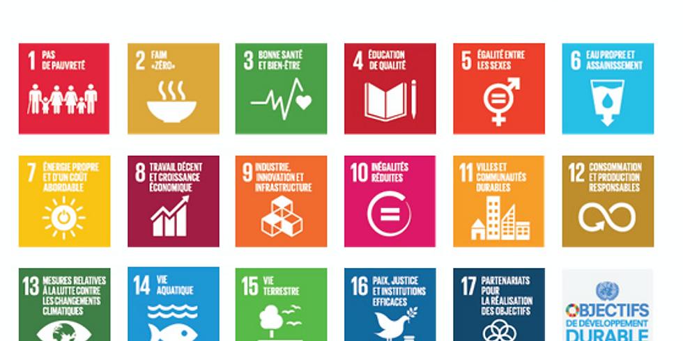 Les 17 Objectifs du Développement Durable