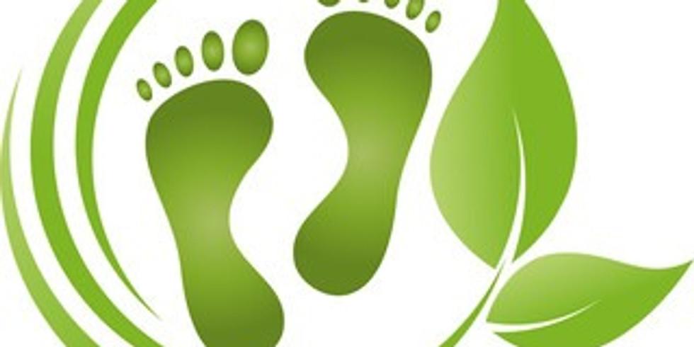 Compenser votre empreinte écologique