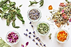 various herbal tea ingredients in glass