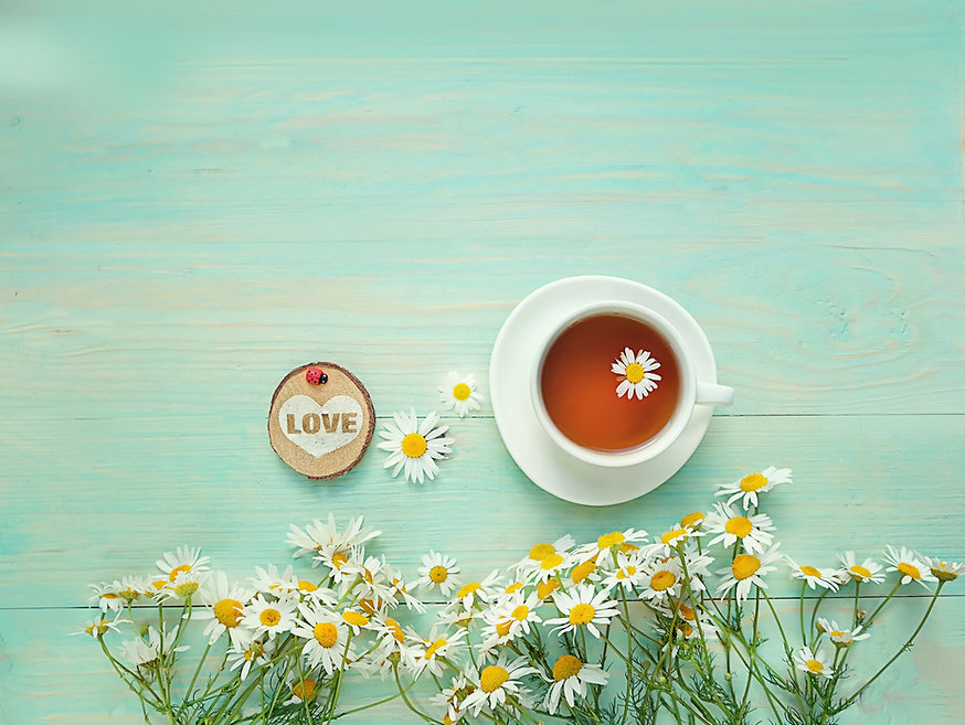 chamomile flowers and cup of tea on tabl