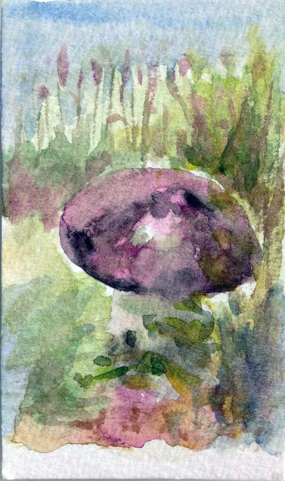mushroom garden feature mini watercolour painting