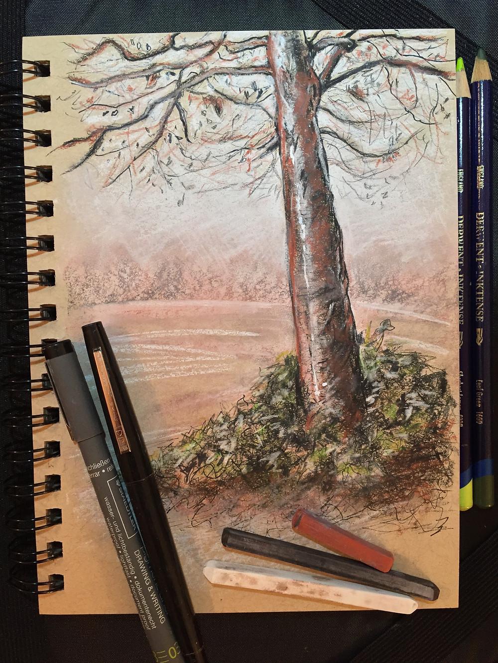 Kirkstall Abbey Park Tree