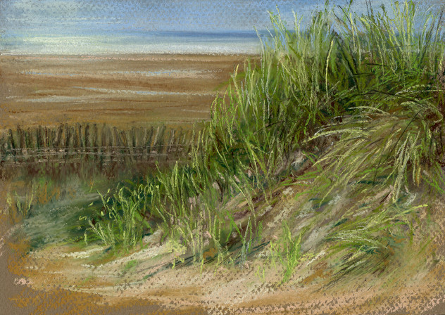 Sheltered Dunes