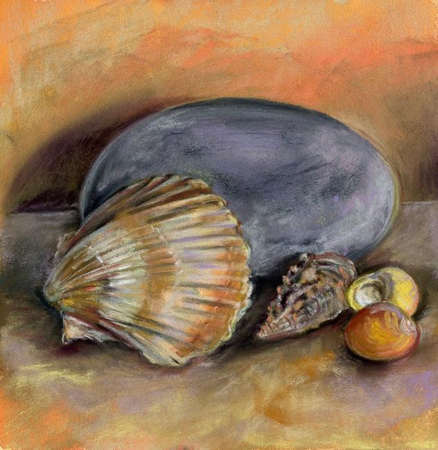 Stone & Seashells