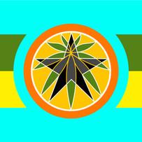 The National Neptshwane Federation Flag