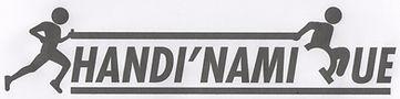 logo Handi'Namique 001 (2).jpg