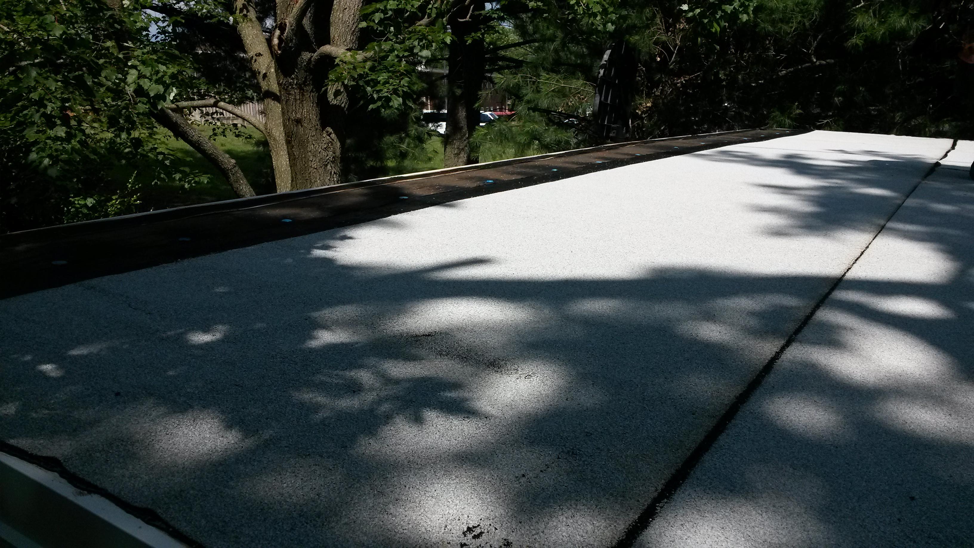 shed restoration- new roof