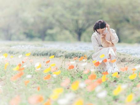お花畑で出張撮影