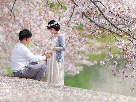 桜のマタニティフォト