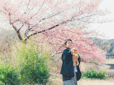 河津桜が続きます