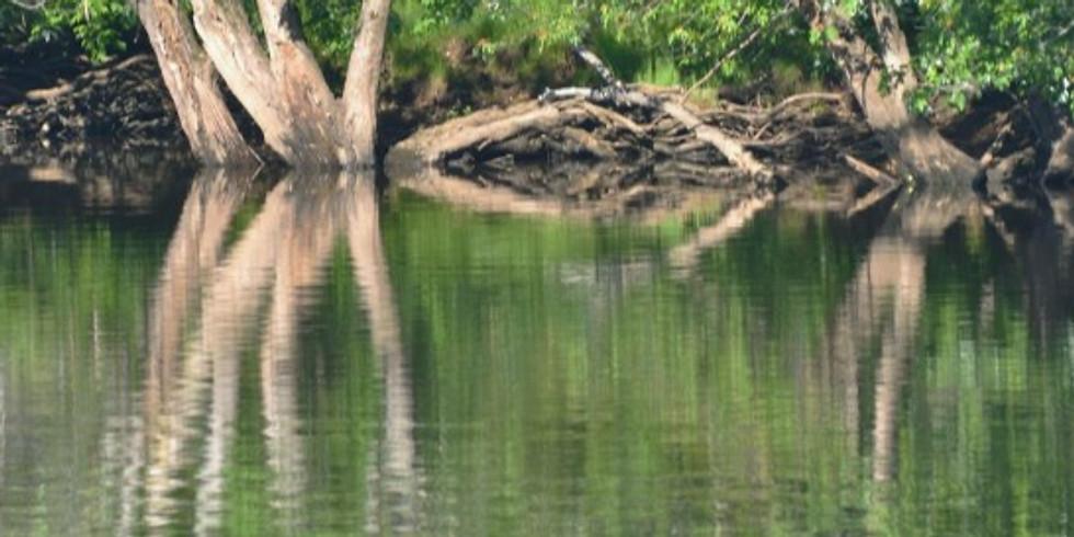 Wild Earth Spiritual Community: Stories on the Threshold