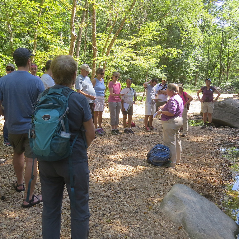 Start SINGing: Spirituality in Nature Group Leaders' Training