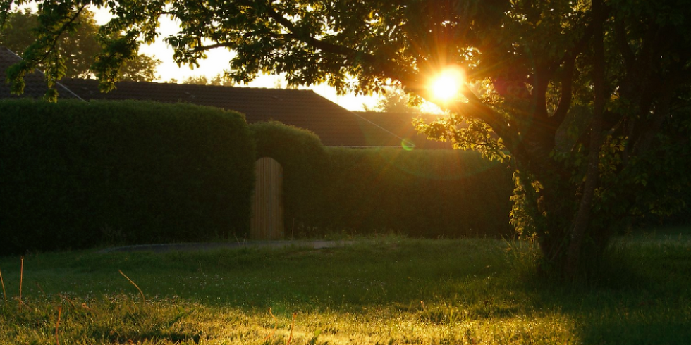ONLINE — Coming Home: Exploring Spiritual Wonders in Your Own Back Yard