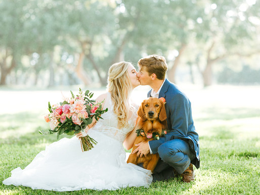 Chelsea & Ross | The Skies of Texas Wedding at The Oaks at Boerne