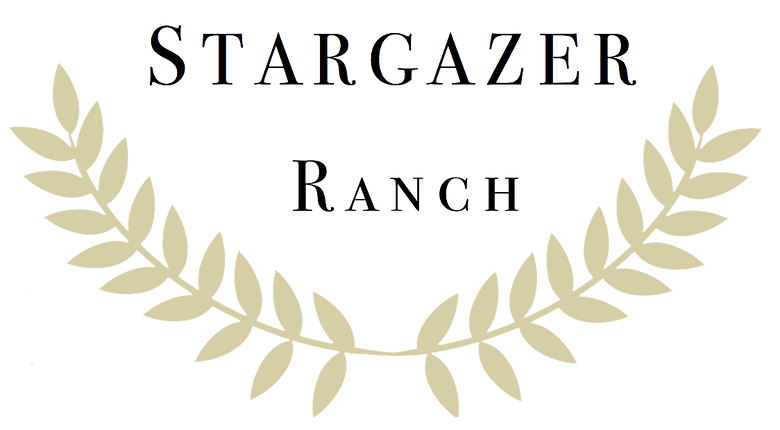 SG Ranch Logo transparent.png