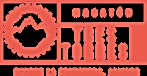 mtb3t_logotipo.png